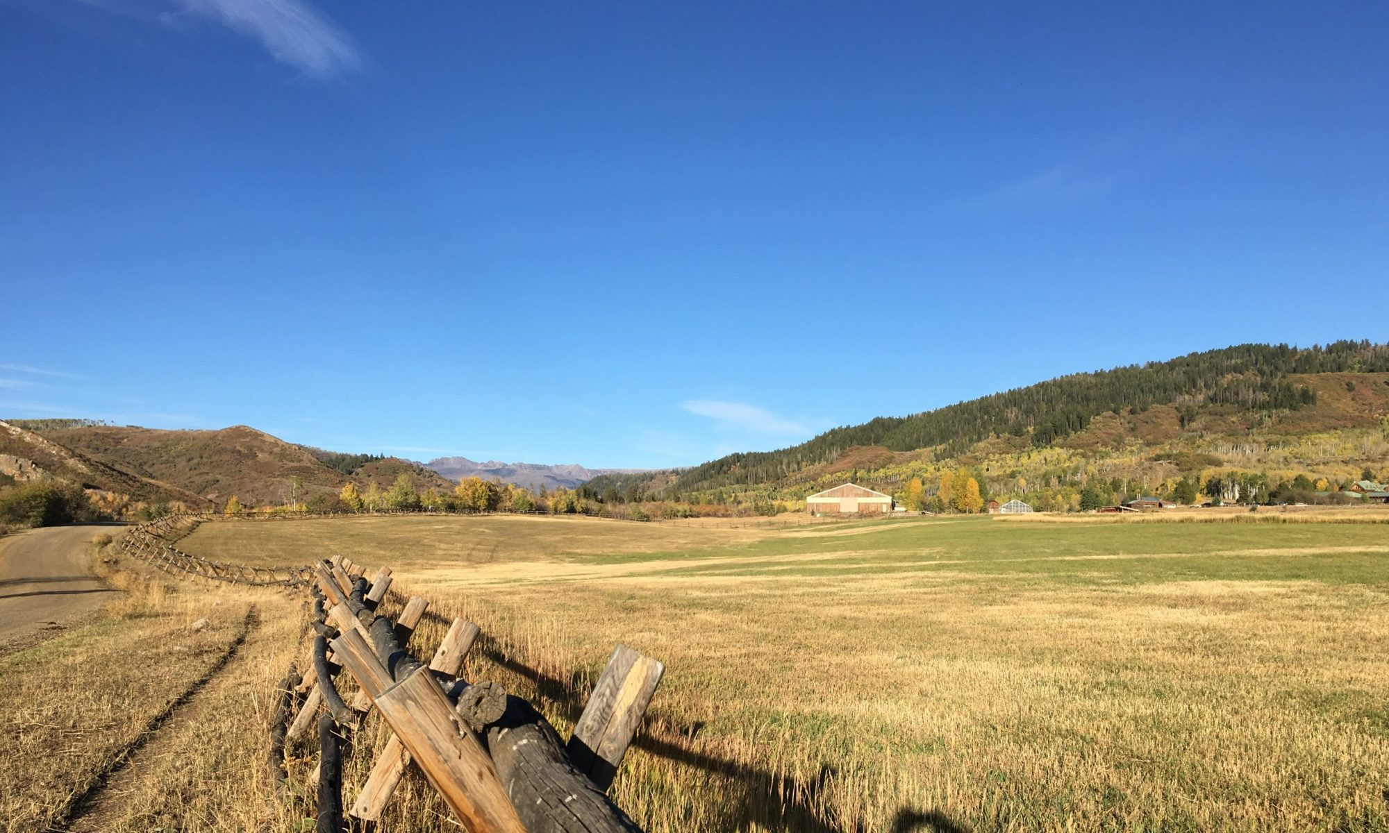 Buck and Rail fence along a mountain meadow