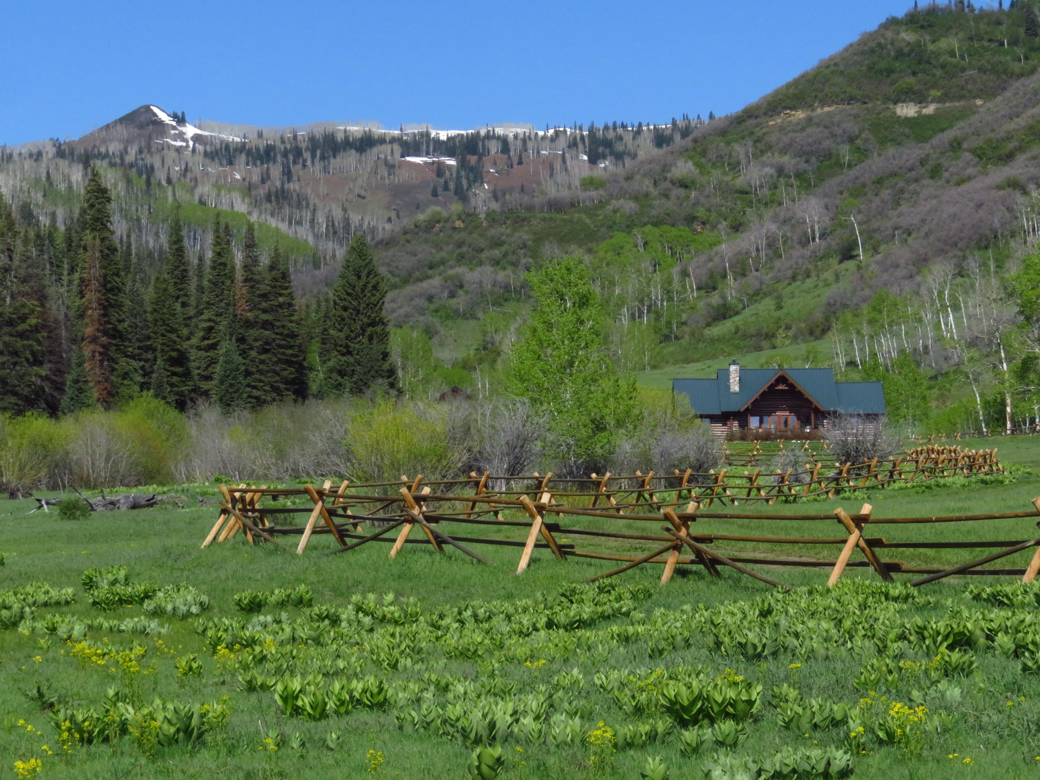 Mystic Hill Ranch