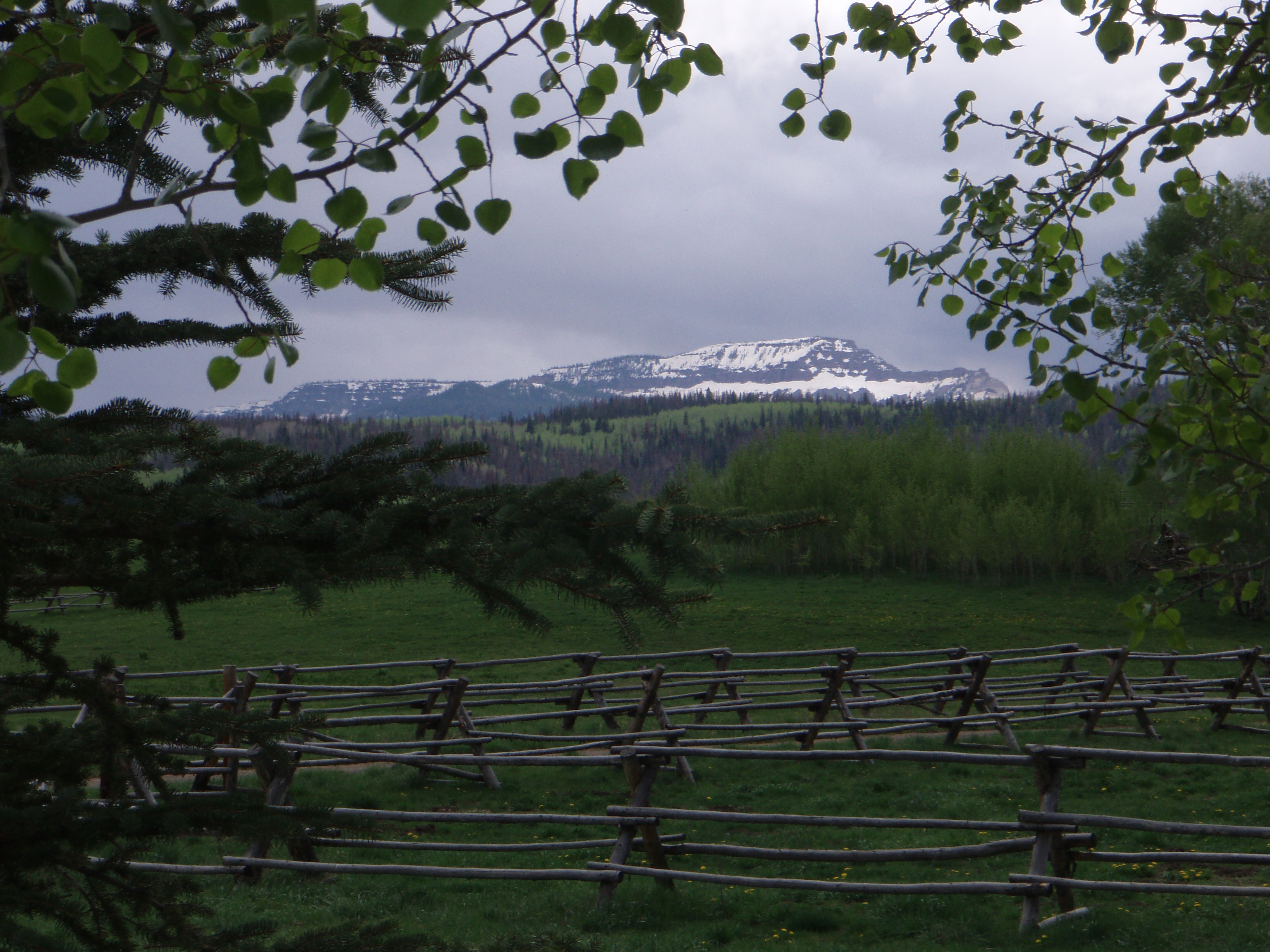 Step Rock Ranch