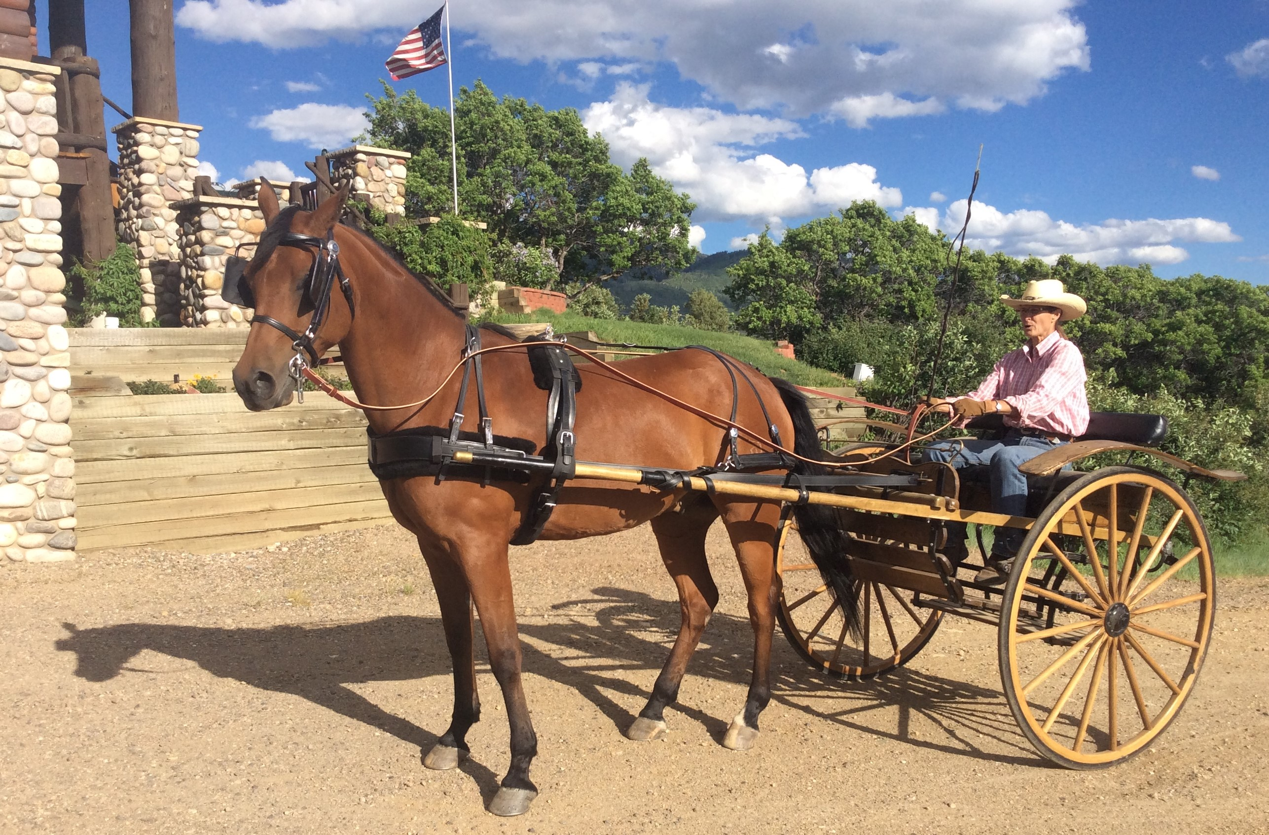 6 Reasons Spring Creek Farm is THE ideal Steamboat Horse Property