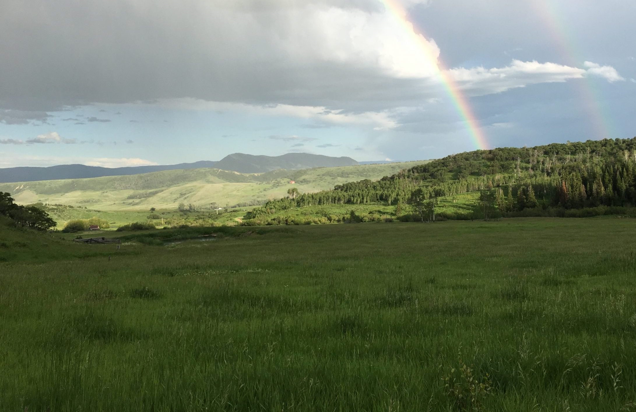 Rainbow and green pastures